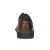 Kožené pánske poltopánky s masívnou podrážkou fluchos, hnedá, 826-3994 - 15